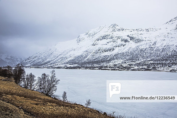 Snow covered mountains and fjord  Austpollen  Hinnoya  Norway