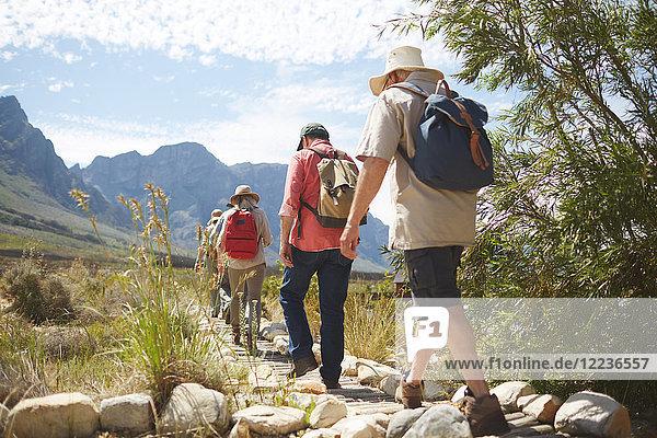 Aktive Seniorenfreunde mit Rucksäcken beim Wandern auf dem sonnigen Sommerwanderweg