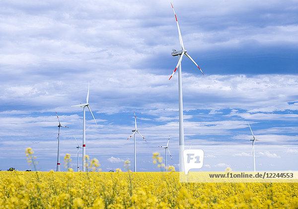 Windkraftanlage in Rapsfeld