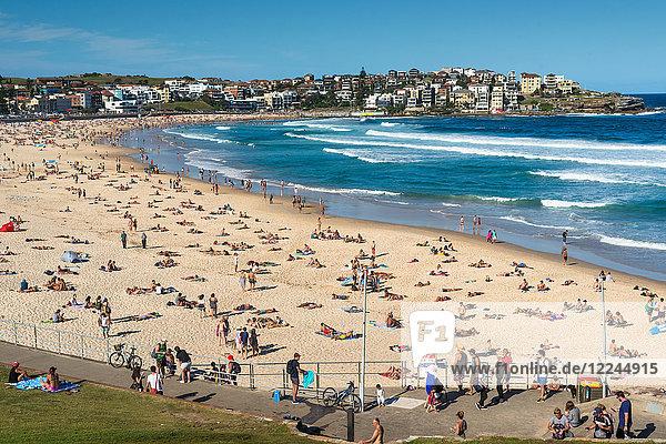 Bondi Beach  Sydney  New South Wales  Australia  Pacific