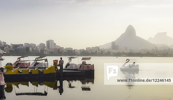 A swan-shaped paddle boat on Lagoa Rodrigo de Freitas in Rio de Janeiro  Brazil  South America