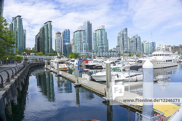 Vancouver Marina and city in the background  Vancouver  British Columbia  Canada  North America