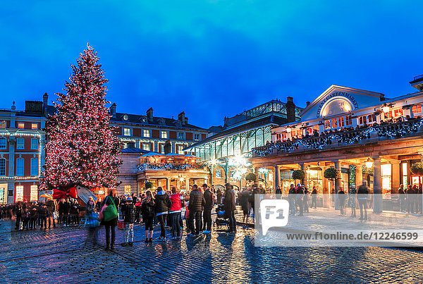 Christmas tree at Covent Garden  London  England  United Kingdom  Europe