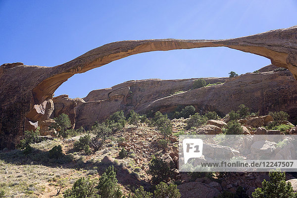 Landscape Arch  Arches National Park  Utah  United States of America  North America