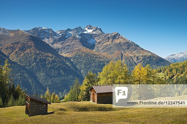 Autumnal mountain landscape with alpine huts  behind Hoher Riffler  Dawin-Alpe  forest meadows  Strengen am Arlberg  Tyrol  Austria  Europe