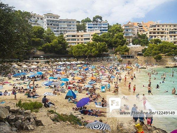 Überfüllter Strand auf Mallorca  Bendinat  Region Palma de Mallorca  Mallorca  Balearen  Spanien  Europa