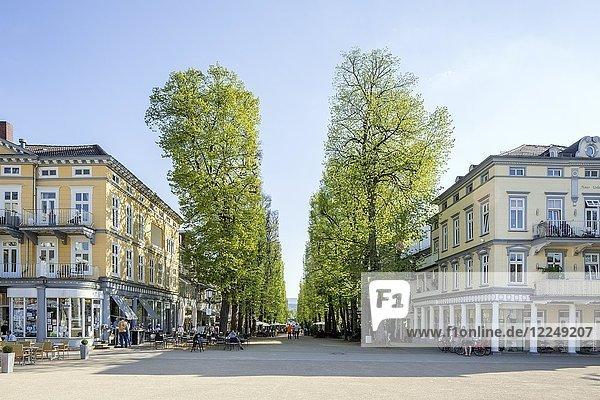 Blick vom Brunnenplatz in die Hauptallee im Kurviertel  Bad Pyrmont  Niedersachsen  Deutschland  Europa