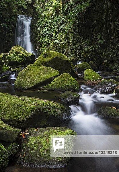 Wasserfall Salto do Prego  Povoação  Sao Miguel  Azoren  Portugal  Europa