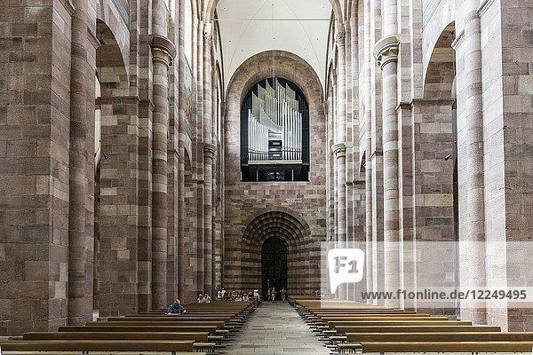 Innenansicht Mittelschiff mit Orgel  Dom St. Maria und St. Stephan  Kaiserdom  Speyer  Rheinland-Pfalz  Deutschland  Europa