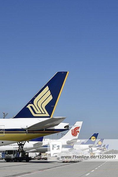 Flugzeuge diverser Airlines angedockt am Terminal 2  Singapore Airlines  Air China  Lufthansa  United Airlines  Flughafen München  Deutschland  Europa