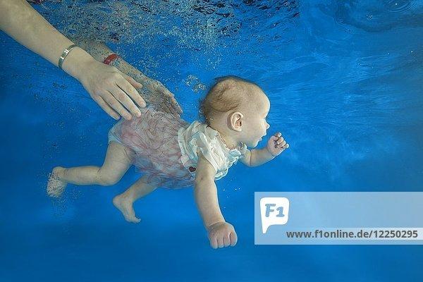Säugling taucht in einem Schwimmbecken  von den Händen der Mutter gehalten