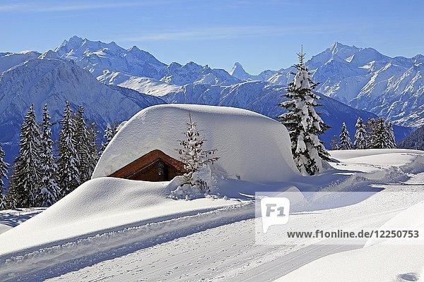 Tief verschneite Berghütte  hinten Gipfel Dom 4545m  Matterhorn 4478m und Weisshorn 4505m  Riederalp  Aletschgebiet  Oberwallis  Wallis  Schweiz  Europa