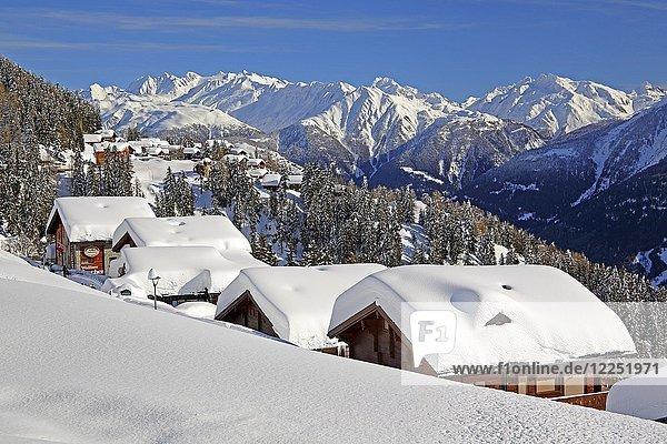 Winterlandschaft mit tief verschneiten Chalets  hinten Ober Rappehorn  3176m und Gross Schinhorn  2939m  Riederalp  Aletschgebiet  Oberwallis  Wallis  Schweiz  Europa