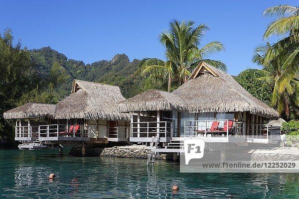 Bungalows am Meer mit Palmen vor grünen Hügeln  Luxushotel  Interconti Resort  Moorea  Gesellschaftsinseln  Inseln unter dem Winde  Pazifik  Französisch-Polynesien  Ozeanien