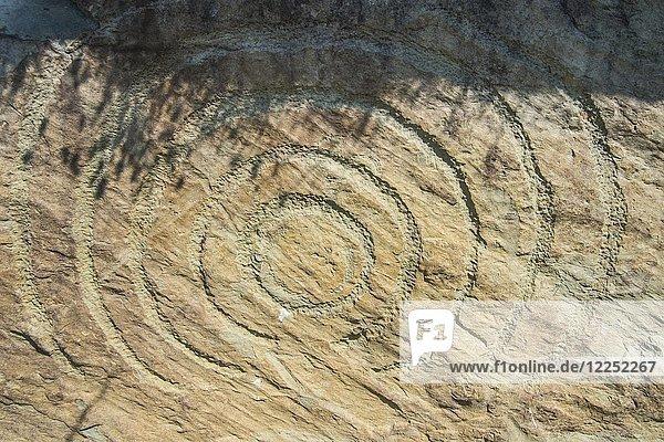 Felsgravur auf neolithischem Ganggrab  Grabstätte  Knowth  Unesco Weltkulturerbe  Bru na Boinne  Donore  County Meath  Irland  Europa