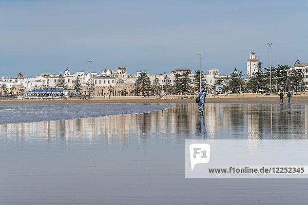 Medina und Sandstrand  Essaouira  Marokko  Afrika