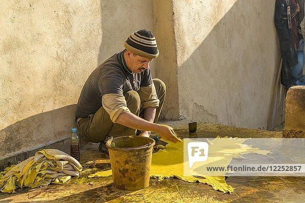 Ledergerber  Leder wird gelb gefärbt  Färberei  Tannerie Chouara  Gerber- und Färberviertel Fes el Bali  Fes  Marokko  Afrika