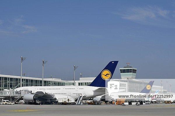 Flugzeuge Airbus  A380-800  Lufthansa  auf Abfertigungsposition  Terminal 2  Flughafen München  Oberbayern  Bayern  Deutschland  Europa