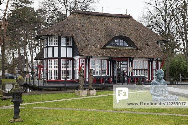 Mikado Garden  japanischer Garten und Galerie  Timmendorfer Strand  Lübecker Bucht  Schleswig-Holstein  Deutschland  Europa