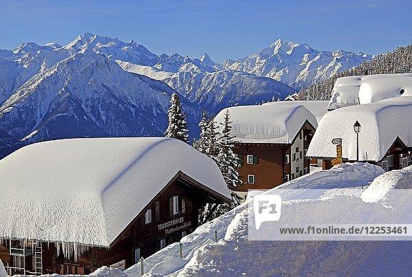 Verschneite Chalets im Dorf  dahinter Dom 4545m  Matterhorn 4478m und Weisshorn 4505m  Bettmeralp  Aletschgebiet  Oberwallis  Wallis  Schweiz  Europa