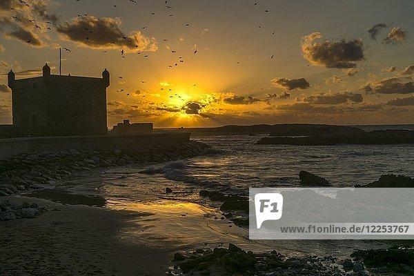 Sonnenuntergang am Turm Scala du Port in Essaouira  Marokko  Afrika
