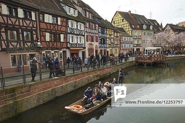 Touristenboot und Fachwerkhäuser am Kanal in der Altstadt  Petite Venise  Colmar  Elsass  Frankreich  Europa