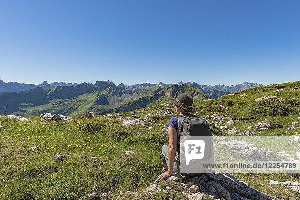 Koblat-Höhenweg am Nebelhorn  hinten Hochvogel  Allgäuer Alpen  Allgäu  Bayern  Deutschland  Europa