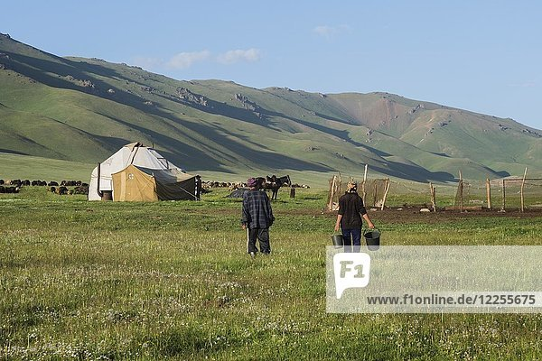 Nomadenjurtencamp  Song Kol Lake  Naryn Provinz  Kirgisistan  Zentralasien