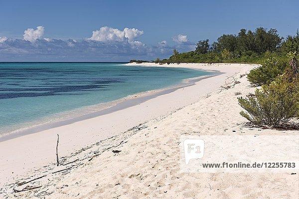 Sandstrand auf Bird Island  Seychellen  Indischer Ozean  Afrika