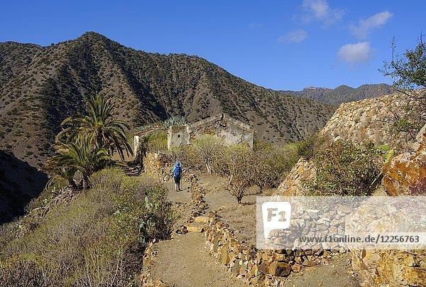 Frau wandert auf Wanderweg  Tamargada bei Vallehermoso  La Gomera  Kanarische Inseln  Spanien  Europa
