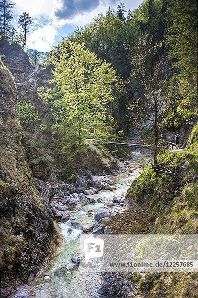 Almbach  Almbachklamm  Berchtesgaden  Oberbayern  Bayern  Deutschland  Europa Almbach, Almbachklamm, Berchtesgaden, Oberbayern, Bayern, Deutschland, Europa