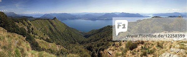 Ausblick vom Morissolino auf den Lago Maggiore  links hinten Gipfel Cima di Morissolo  Panorama  Cannero Riviera  Provinz Verbano-Cusio-Ossola  Region Piemont  Italien  Europa