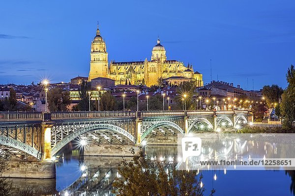 Cathedral with bridge over Tormes river  Salamanca  Castile and Leon  Spain  Europe