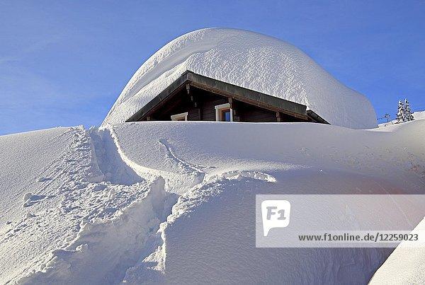 Verschneites Chalet im Dorf  Bettmeralp  Aletschgebiet  Oberwallis  Wallis  Schweiz  Europa