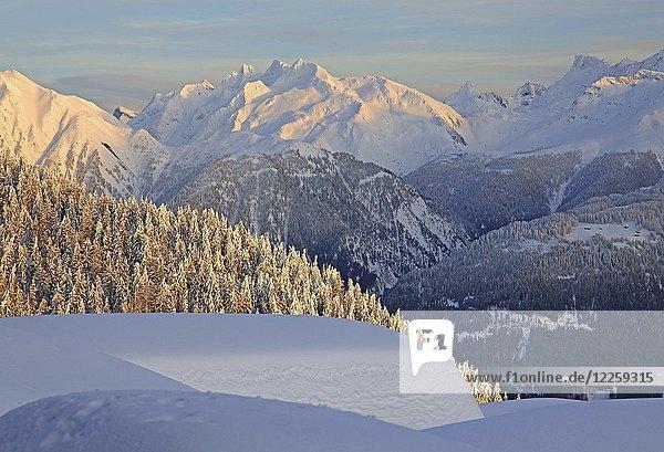 Winterlandschaft mit Ausblick ins Rhonetal und zum Gross Schinhorn 2939m  Bettmeralp  Aletschgebiet  Oberwallis  Wallis  Schweiz  Europa