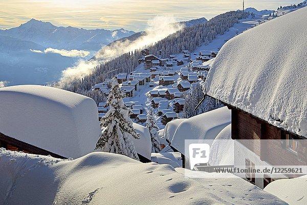 Dorfansicht mit verschneiten Häusern  dahinter Weisshorn 4505m  Bettmeralp  Aletschgebiet  Oberwallis  Wallis  Schweiz  Europa