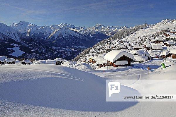 Dorfansicht über dem Rhonetal tief verschneit  dahinter Fletschhorn 3985m  Dom 4545m  Matterhorn 4478m und Weisshorn 4505m  Bettmeralp  Aletschgebiet  Oberwallis  Wallis  Schweiz  Europa