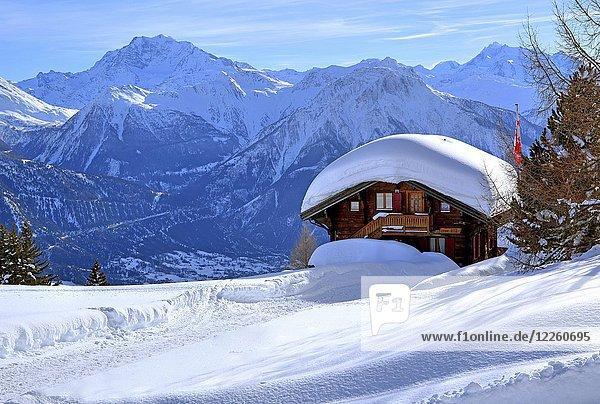 Winterlandschaft mit tief verschneitem Chalet vor Fletschhorn 3985m und Dom 4545m  Riederalp  Aletschgebiet  Oberwallis  Wallis  Schweiz  Europa