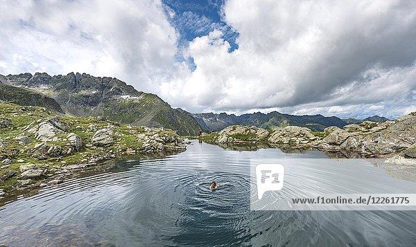 Frau schwimmt in einem kleinen See  Klafferkessel  Schladminger Höhenweg  Schladminger Tauern  Schladming  Steiermark  Österreich  Europa Frau schwimmt in einem kleinen See, Klafferkessel, Schladminger Höhenweg, Schladminger Tauern, Schladming, Steiermark, Österreich, Europa
