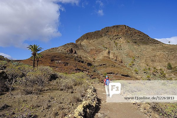 Hiking trail  ancient cave dwelling on Mount Calvario  Alajero  La Gomera  Canary Islands  Spain  Europe