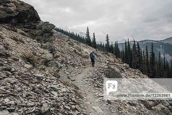 Kanada  British Columbia  Yoho Nationalpark  Wanderer auf dem Weg zum Mount Burgess