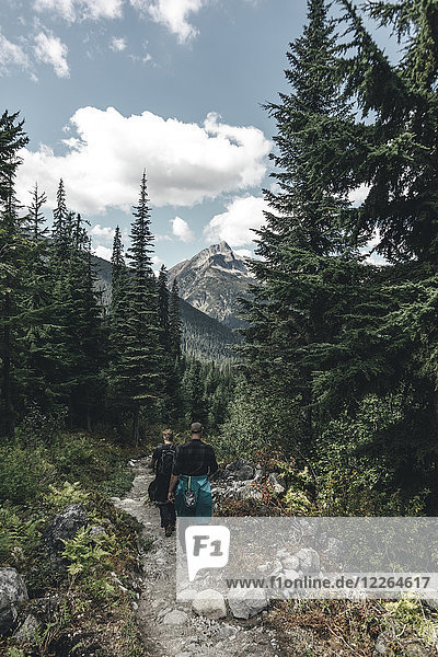 Kanada  British Columbia  Glacier National Park  Wanderer auf dem Sir Donald Trail