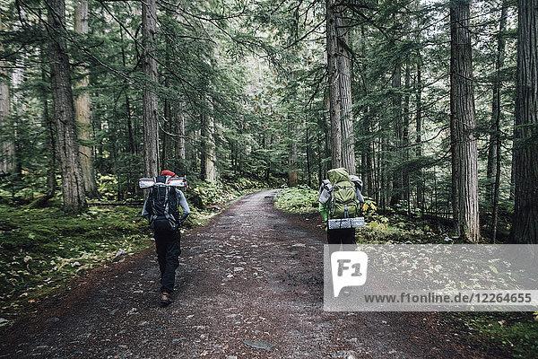 Kanada  British Columbia  Mount Robson Provincial Park  Wanderer auf dem Berg Lake Trail