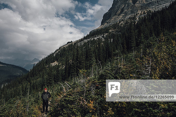Kanada  British Columbia  Yoho Nationalpark  Wandern am Mount Burgess