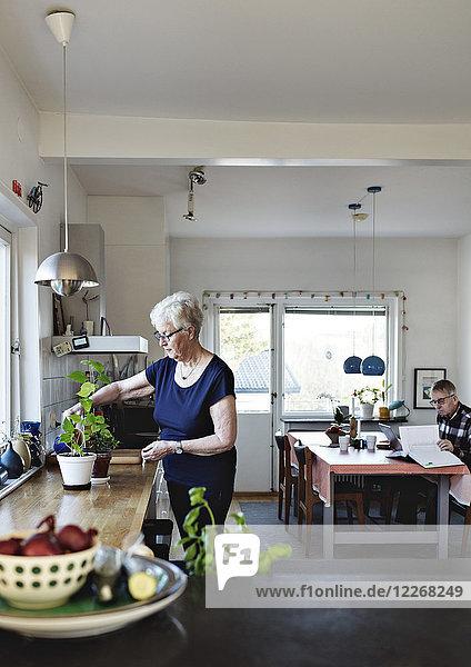 Seniorin im Ruhestand beim Gießen von Topfpflanzen auf der Küchentheke zu Hause
