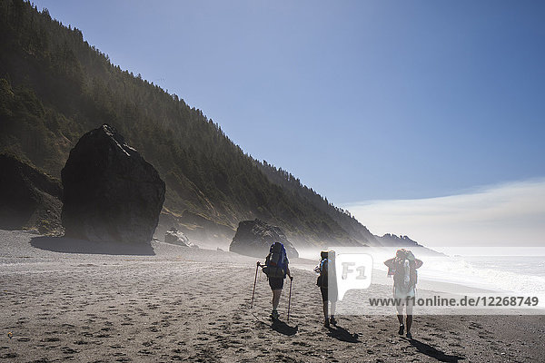 Backpackers hiking along beach  Lost Coast Trail  Kings Range National Conservation Area  California  USA