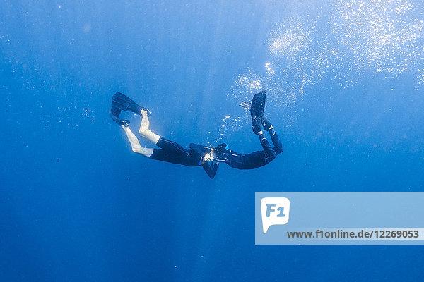 Couple underwater diving  Tambon Ko Tarutao  Chnag Wat Krabi  Thailand