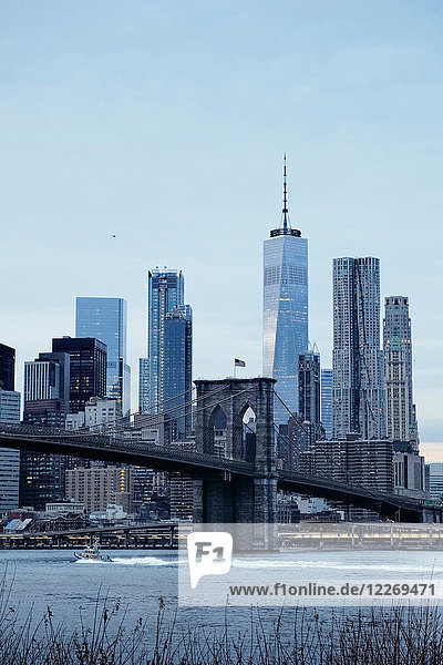 Cityscape with Brooklyn Bridge and Lower Manhattan skyline  New York  USA
