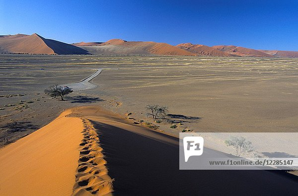 Namibia  Namib-Naukluft National park  Sesriem  Dune 45  overview from top