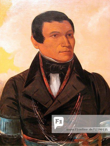 George Catlin Native America in Caucasian Dress